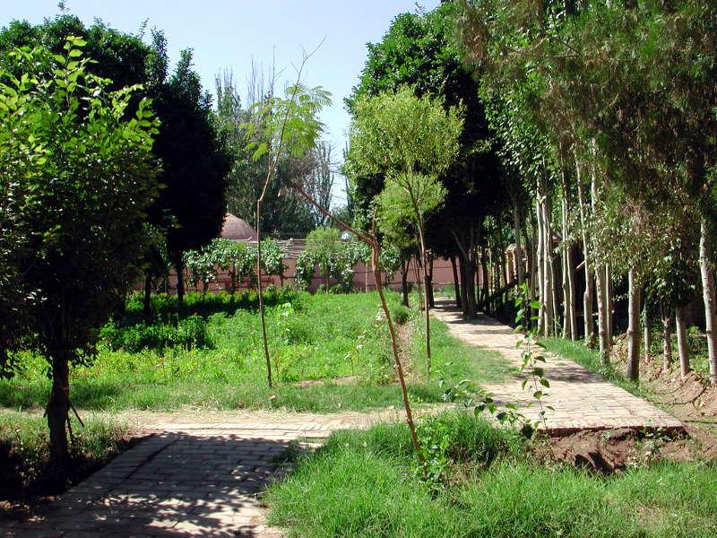 シルクロード一人旅「我的長征2006」その9・カシュガル・香妃墓と並木道-0910