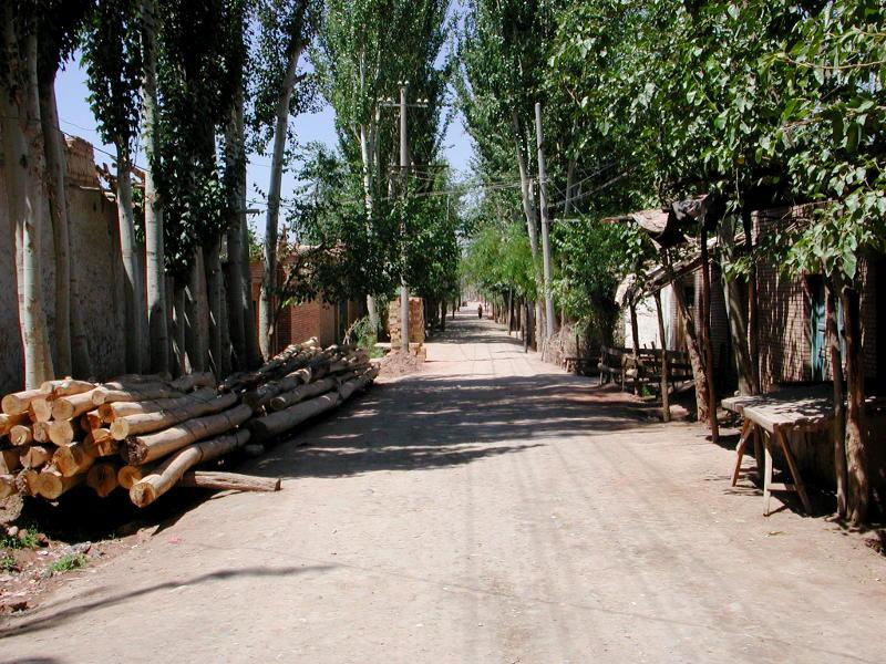 シルクロード一人旅「我的長征2006」その9・カシュガル・香妃墓と並木道-0927