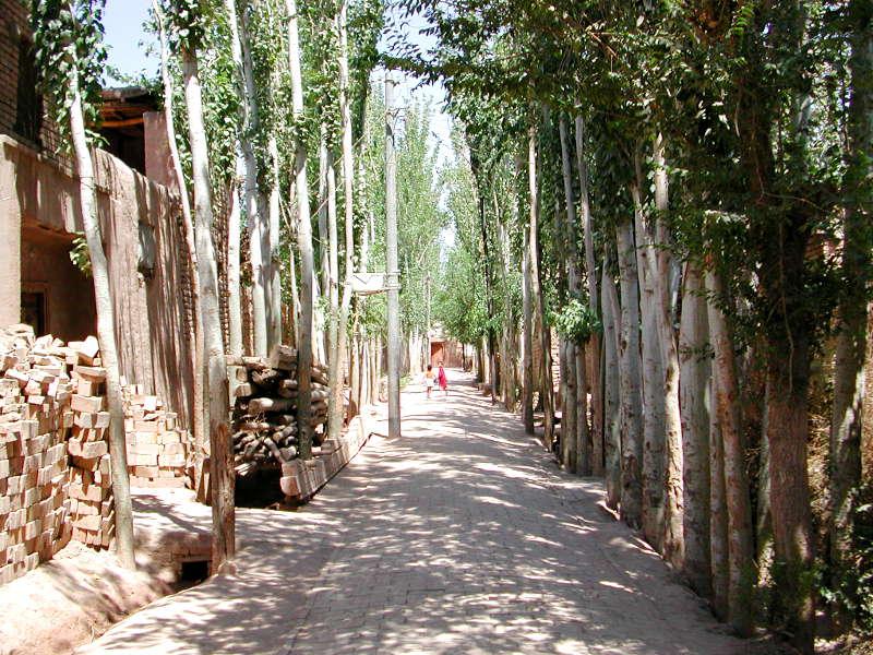 シルクロード一人旅「我的長征2006」その9・カシュガル・香妃墓と並木道-0930