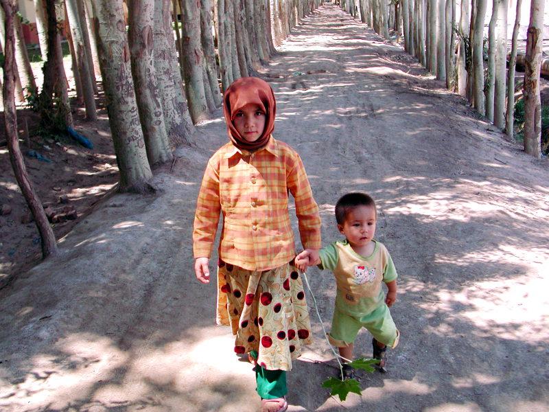 シルクロード一人旅「我的長征2006」その9・カシュガル・香妃墓と並木道-0936