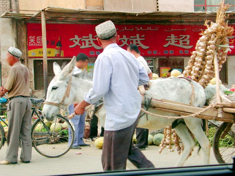 シルクロード一人旅「我的長征2006」その15・カシュガル・カラクリ湖への道-1512