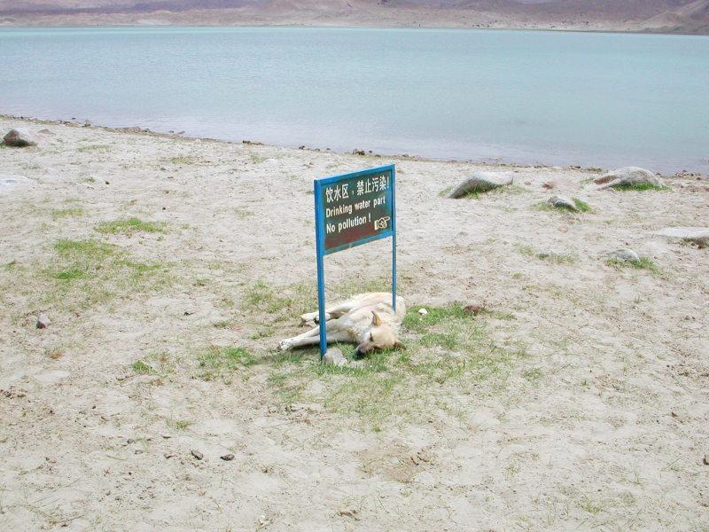 シルクロード一人旅「我的長征2006」その17・カラクリ湖-1729
