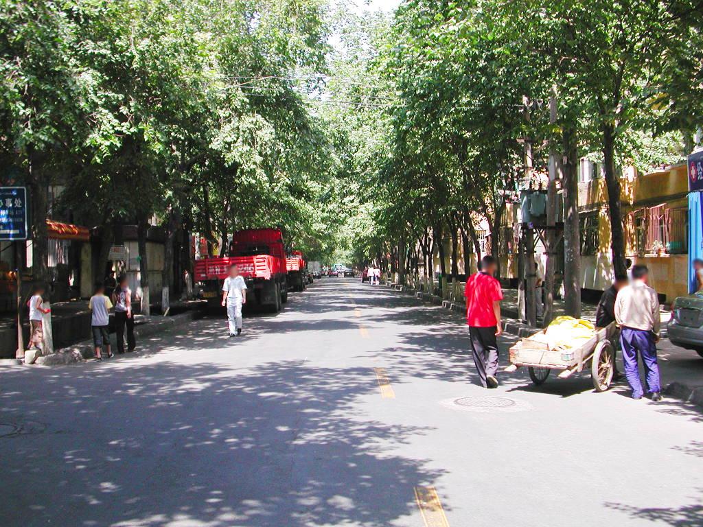 シルクロード一人旅「我的長征2006」その23・ウルムチ・新疆維吾尓自治区博物館-2312
