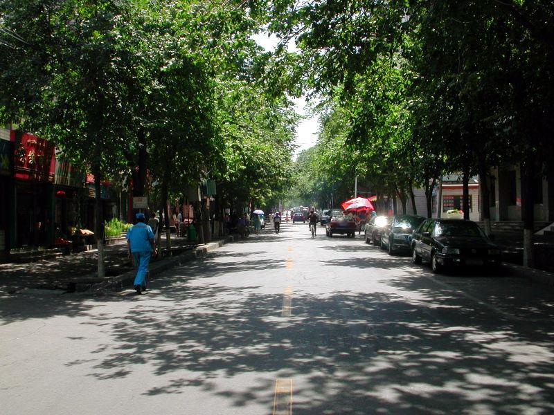 シルクロード一人旅「我的長征2006」その23・ウルムチ・新疆維吾尓自治区博物館-2313