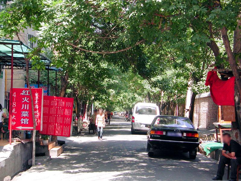 シルクロード一人旅「我的長征2006」その23・ウルムチ・新疆維吾尓自治区博物館-2314