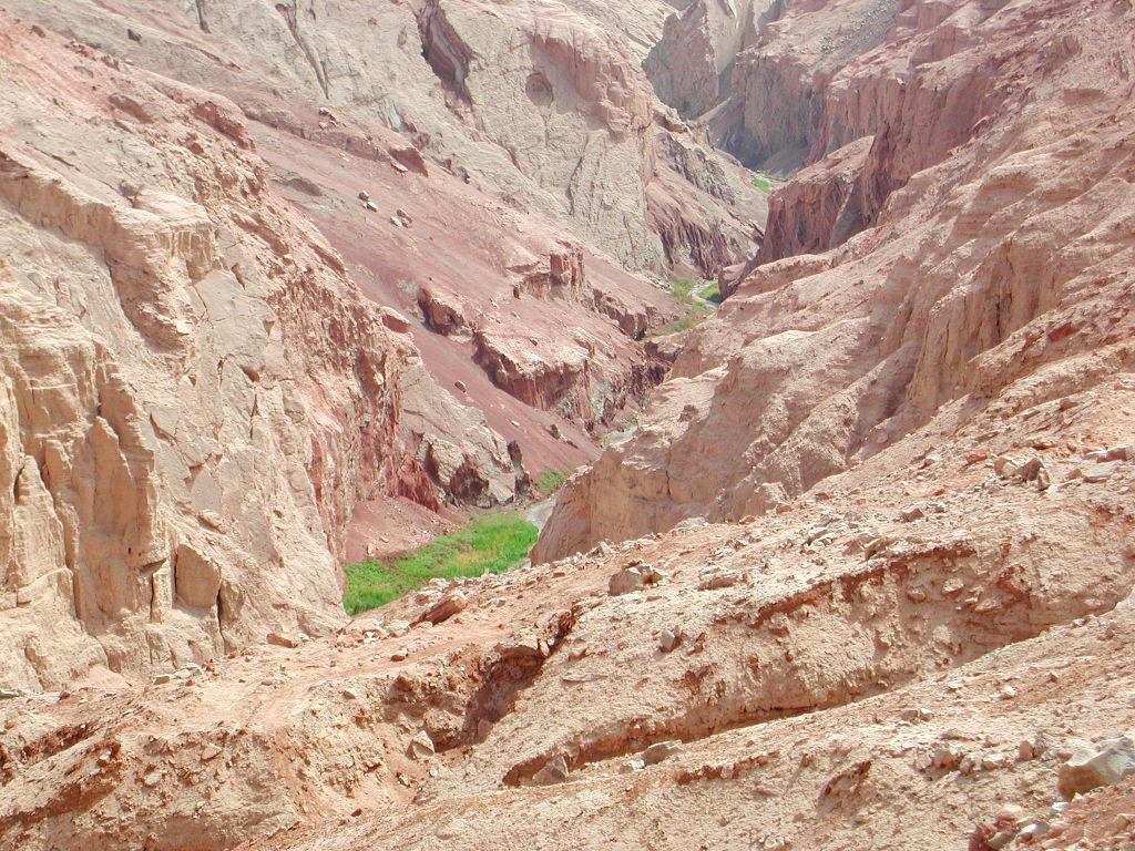 シルクロード一人旅「我的長征2006」その26・トルファン・吐峪溝-2616