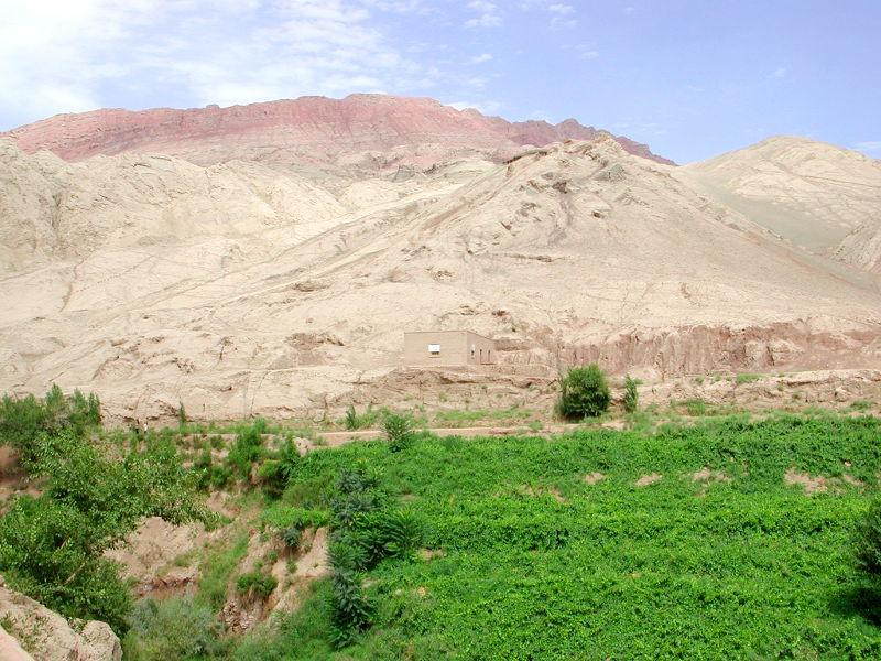 シルクロード一人旅「我的長征2006」その26・トルファン・吐峪溝-2624