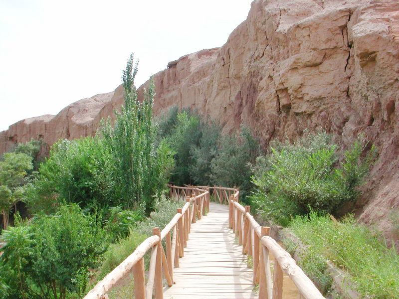 シルクロード一人旅「我的長征2006」その26・トルファン・吐峪溝-2625