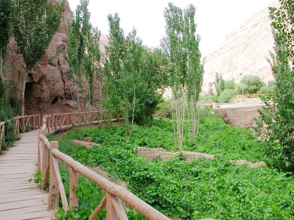 シルクロード一人旅「我的長征2006」その26・トルファン・吐峪溝-2626