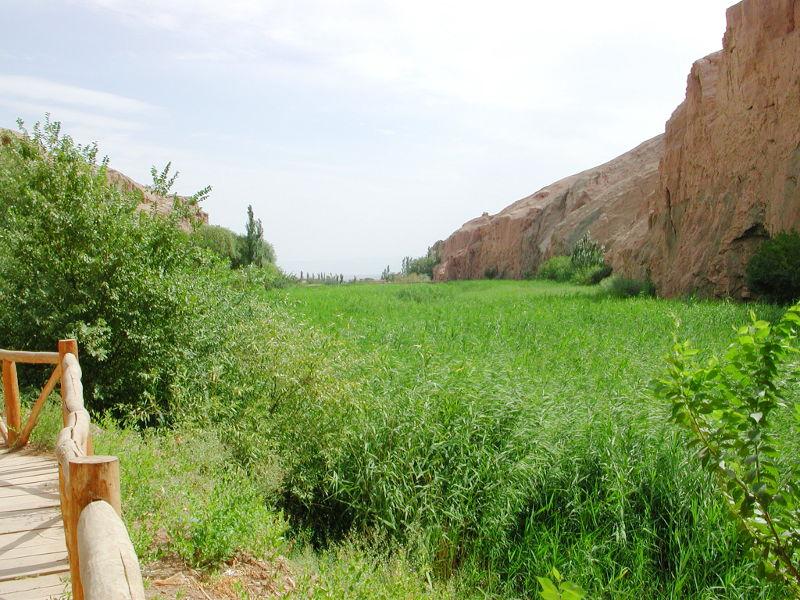 シルクロード一人旅「我的長征2006」その27・トルファン・吐峪溝-2714