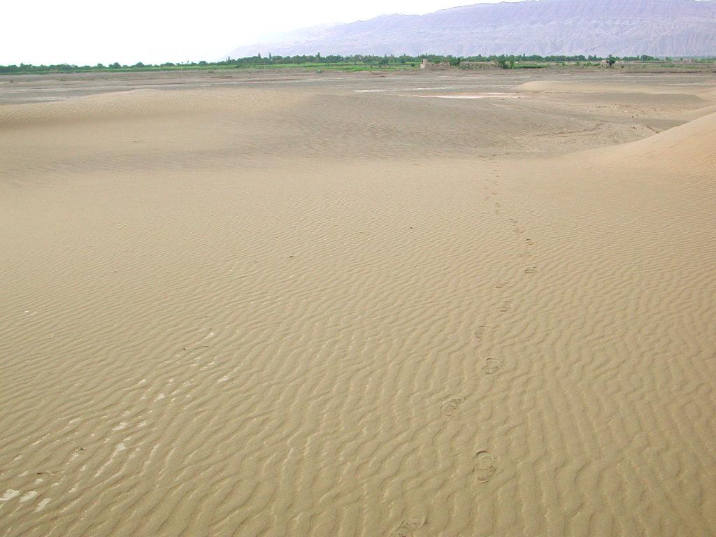 シルクロード一人旅「我的長征2006」その28・トルファン・沙山公園-2814