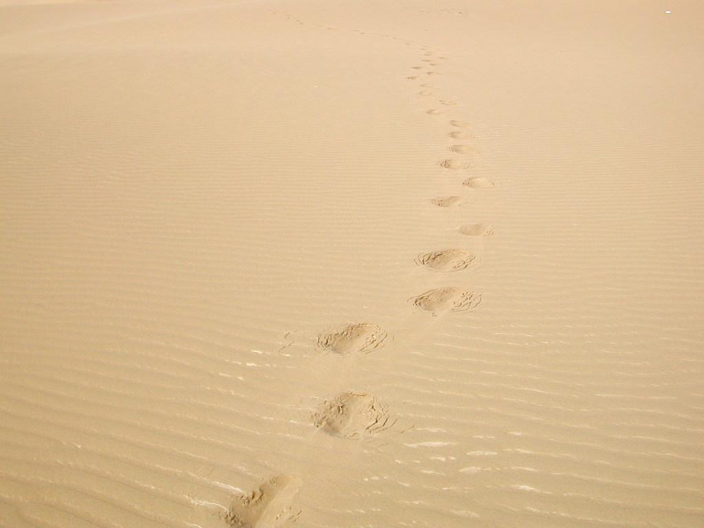 シルクロード一人旅「我的長征2006」その28・トルファン・沙山公園-2815