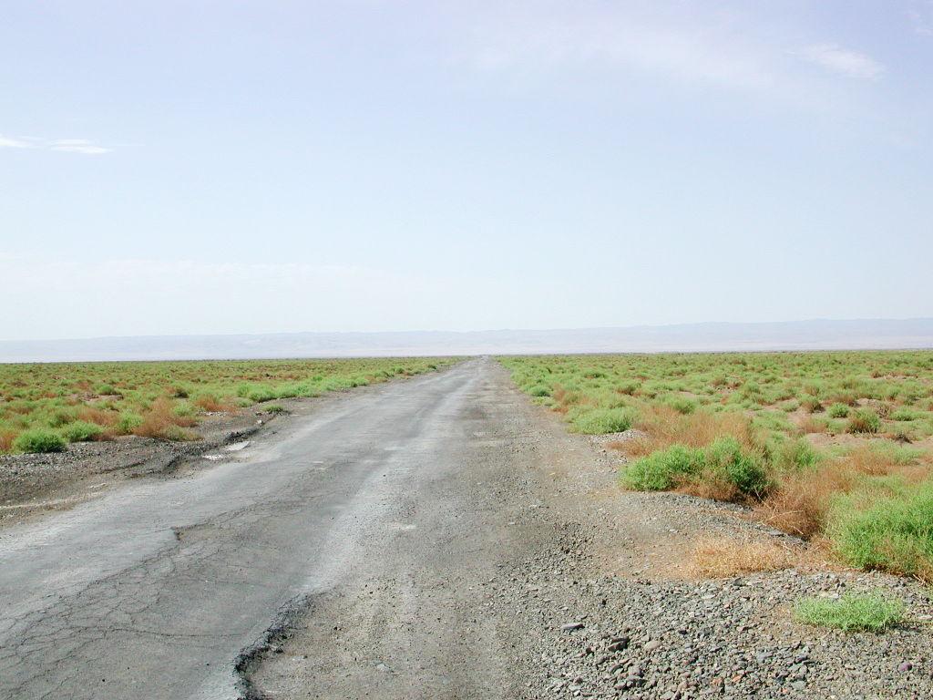 シルクロード一人旅「我的長征2006」その30・トルファン・艾丁湖-3008