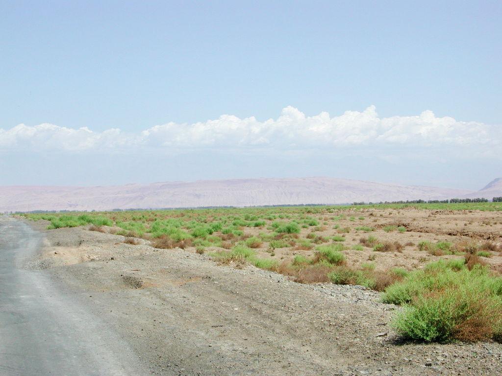 シルクロード一人旅「我的長征2006」その30・トルファン・艾丁湖-3009