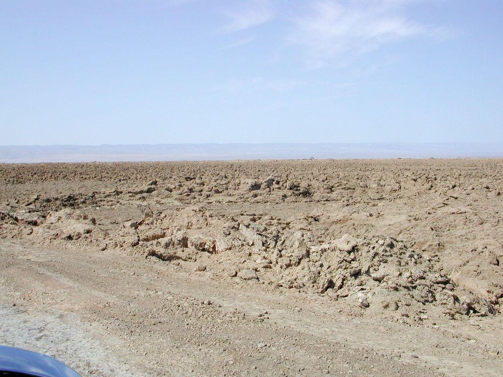 シルクロード一人旅「我的長征2006」その30・トルファン・艾丁湖-3011