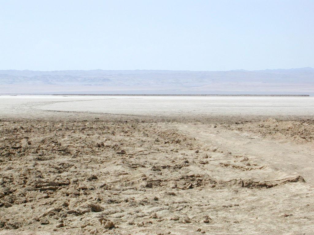 シルクロード一人旅「我的長征2006」その30・トルファン・艾丁湖-3014