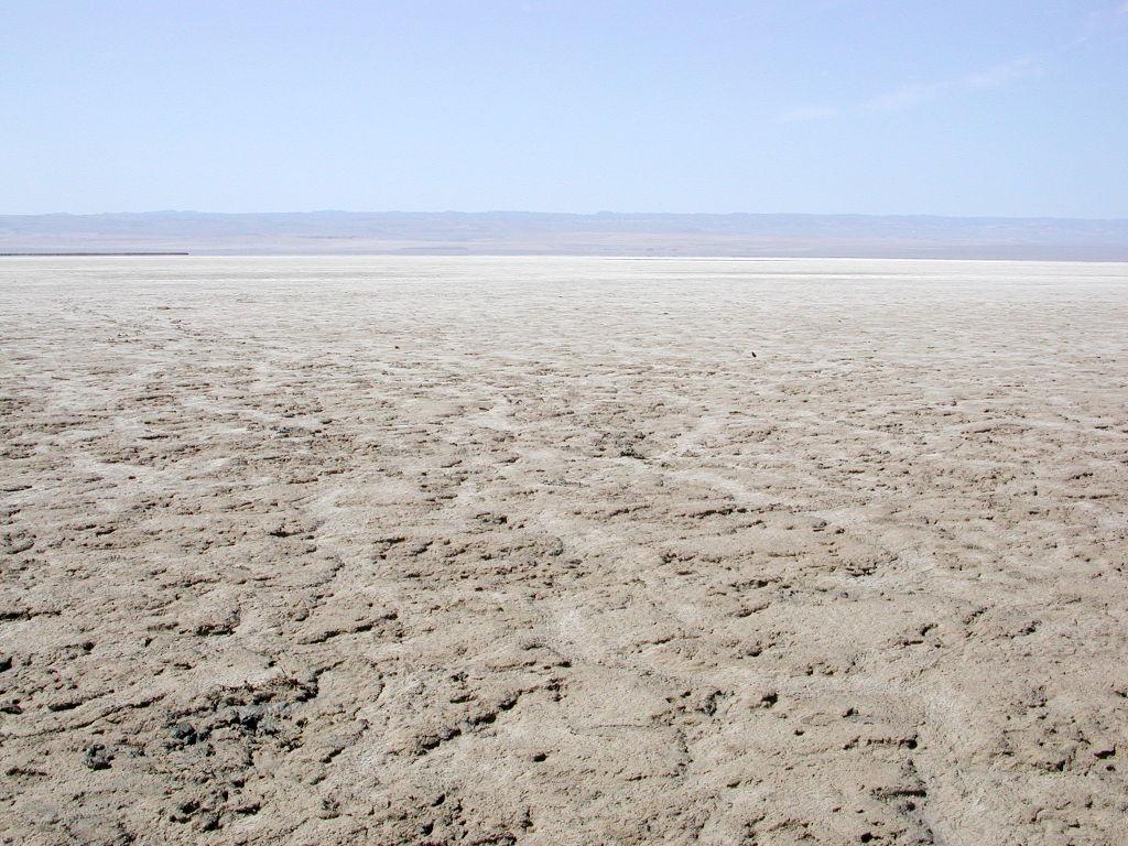 シルクロード一人旅「我的長征2006」その30・トルファン・艾丁湖-3022