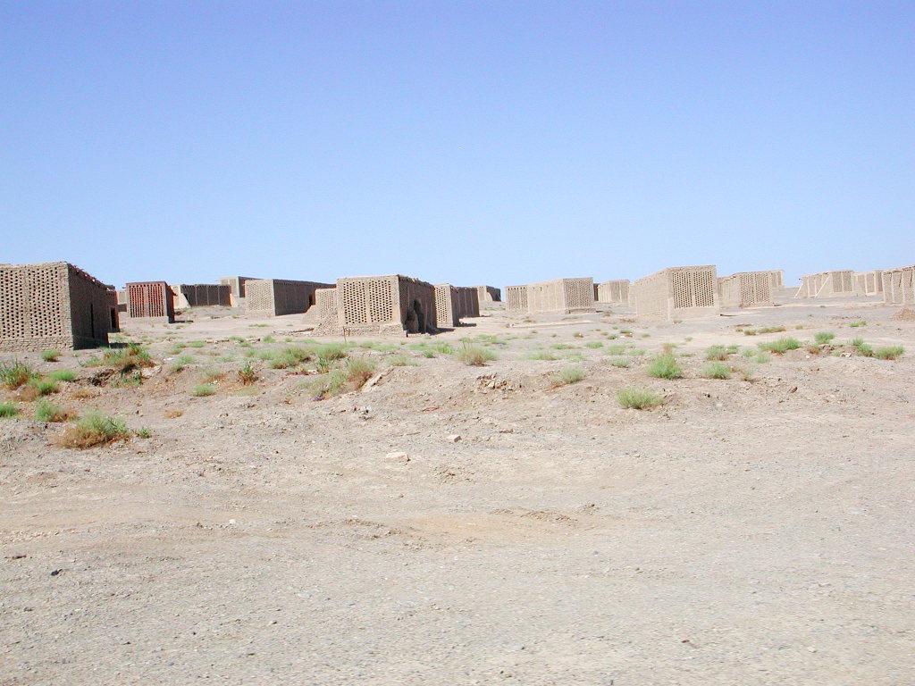 シルクロード一人旅「我的長征2006」その34・トルファン・ウイグル民家とぶどう-3403