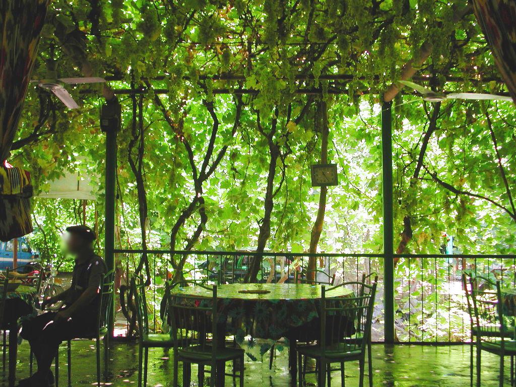 シルクロード一人旅「我的長征2006」その36・トルファン・葡萄溝の食堂でのんびり-3608