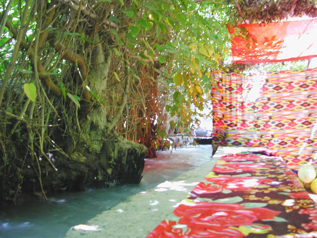 シルクロード一人旅「我的長征2006」その36・トルファン・葡萄溝の食堂でのんびり-3611