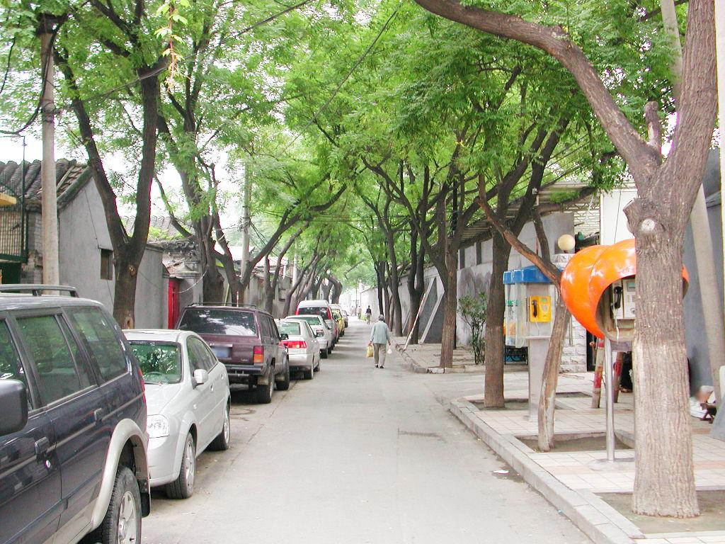 シルクロード一人旅「我的長征2006」その44・北京・故宮の周りを歩く-4405