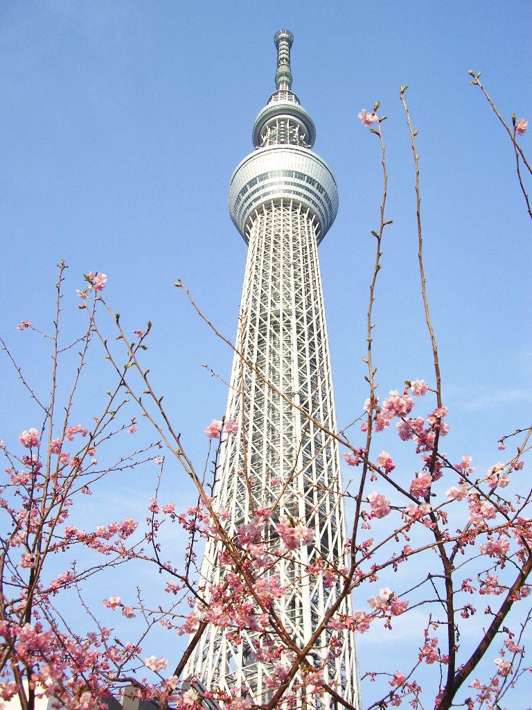 東京都電で行く東京スカイツリー2012-1022