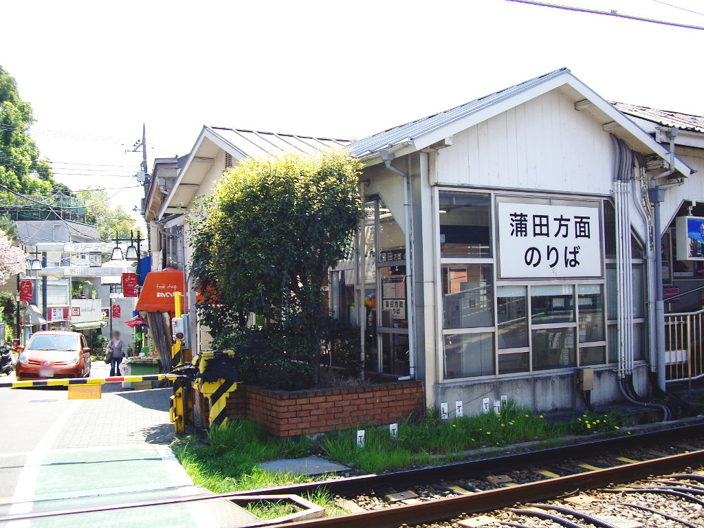 東急池上線・桜の石川台2009春-1107