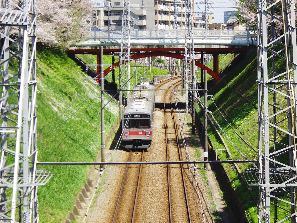 東急池上線・桜の石川台2009春-1114