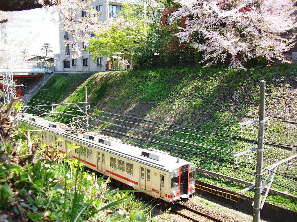 東急池上線・桜の石川台2009春-1117
