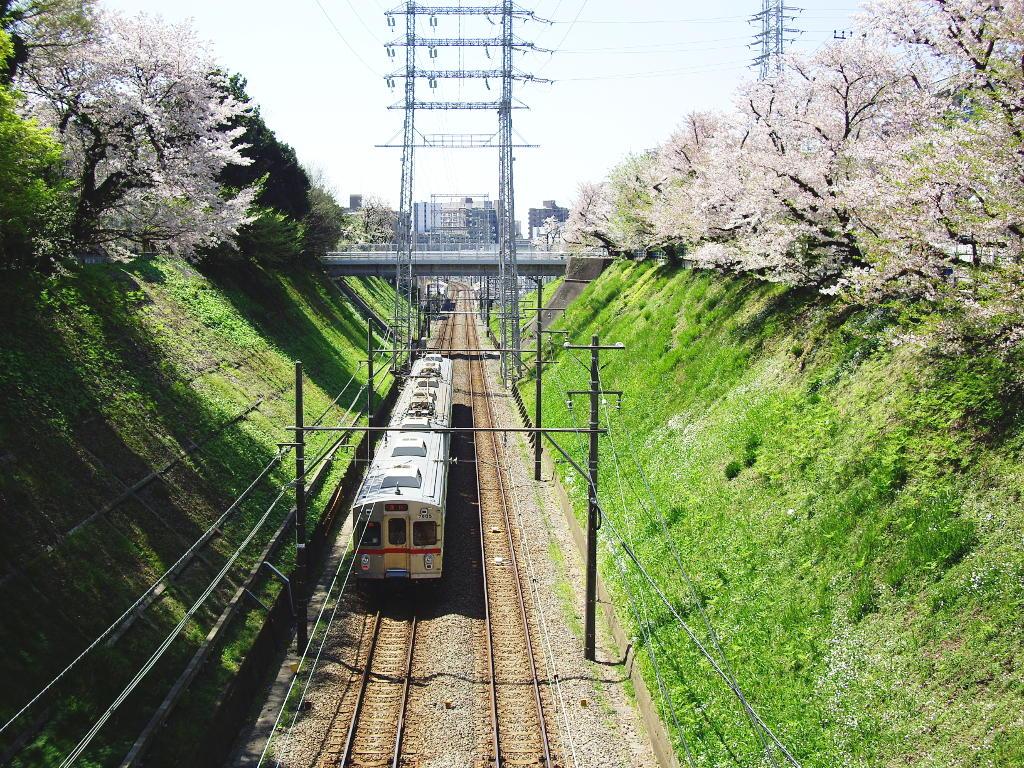 東急池上線・桜の石川台2009春-1120
