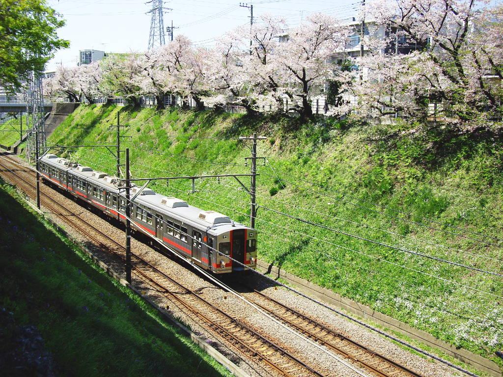 東急池上線・桜の石川台2009春-1121